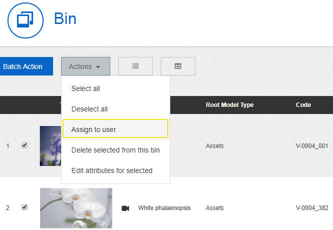 Assign a Clip bin to a specific user