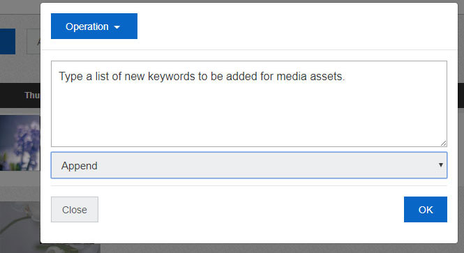 Add more keywords to all the media assets in the Clip bin